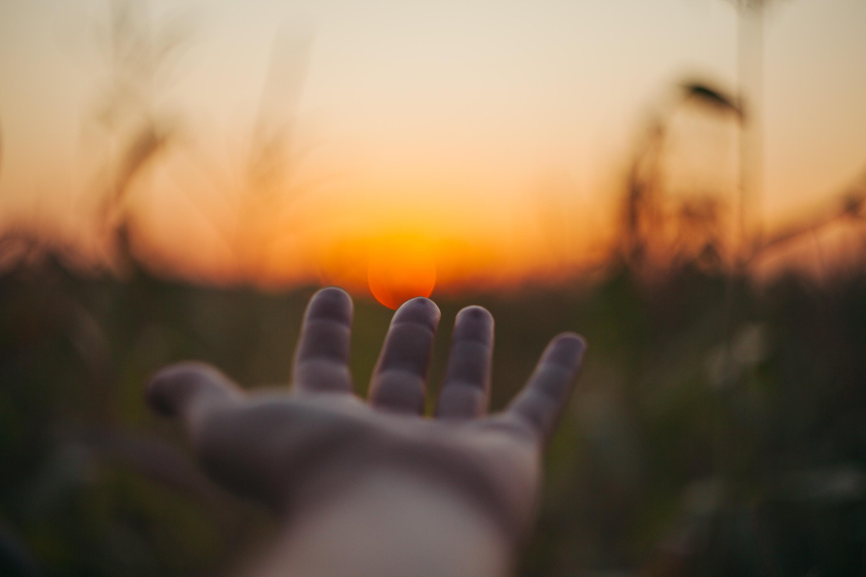 Hvad er tankefeltterapi (TFT)?